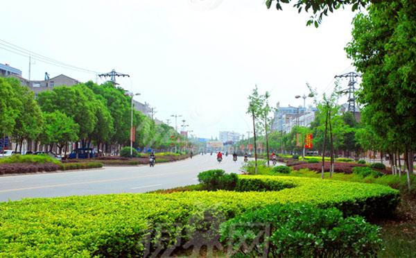环保透水砖机厂家解密绿色街道的概念