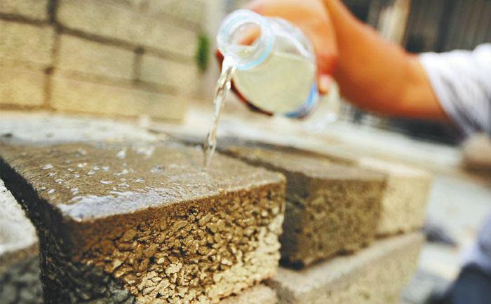 按照海绵城市的标准改造城市水系