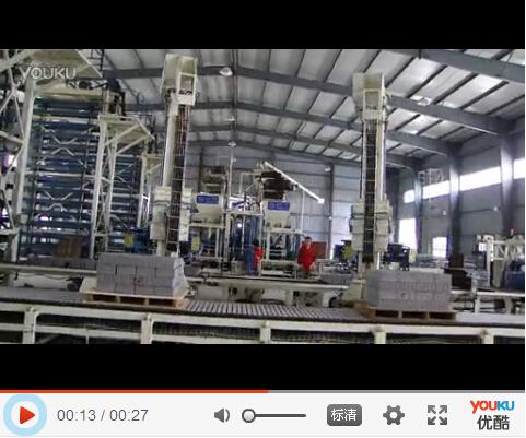 双机并列码垛机器人现场实拍视频